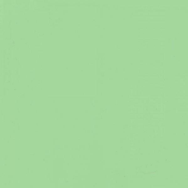 Светло зеленый BS 2169-55