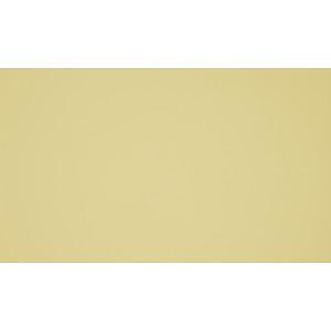 0573 Светло-жёлтый