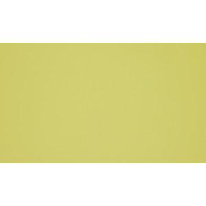 0661 Жёлтый галлион