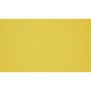 0670 Жёлтый альтамир