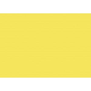 U 131 Цитрусовый жёлтый
