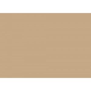 U 204 Камель коричневый